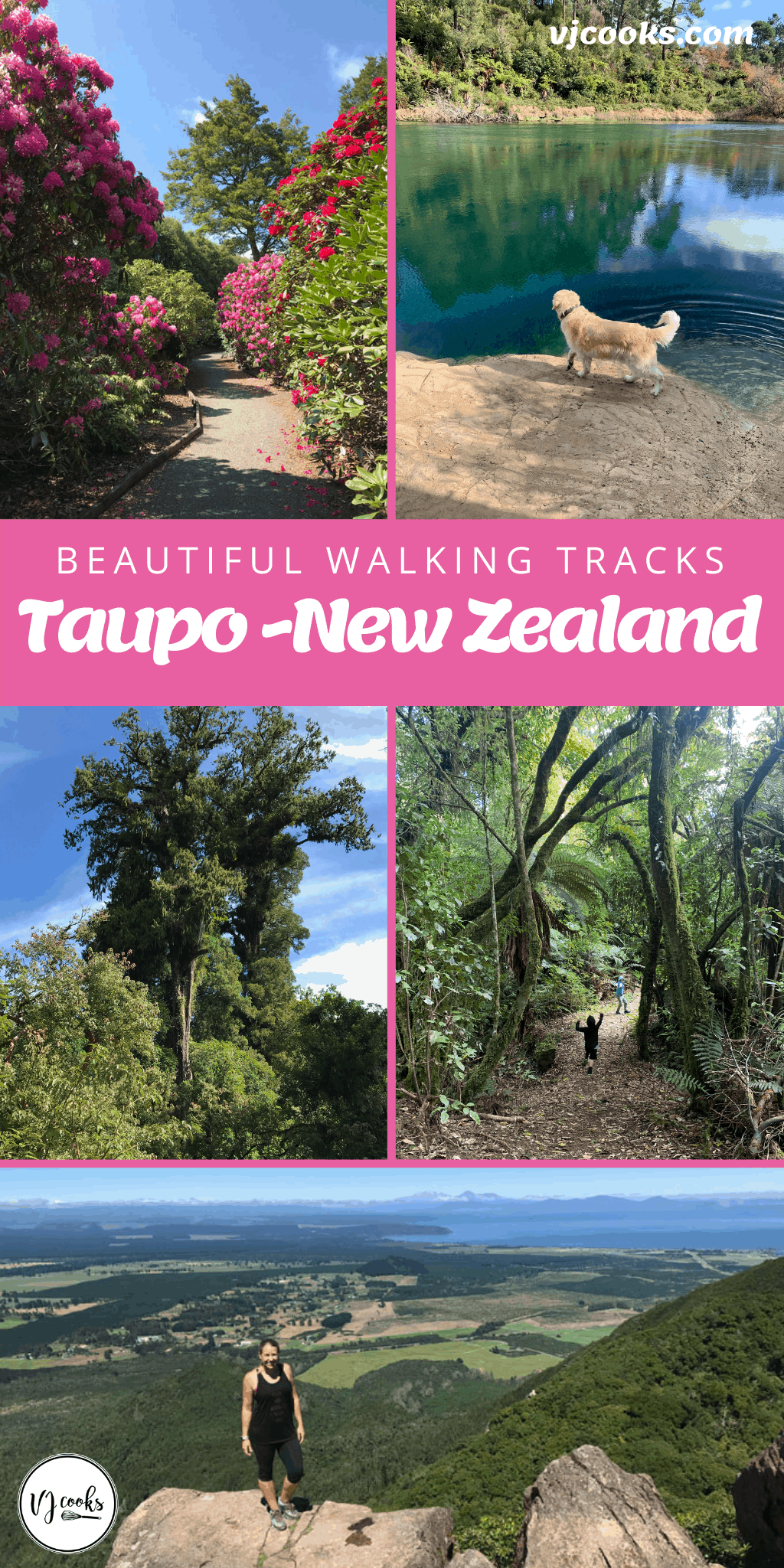 Taupo walks and walking tracks
